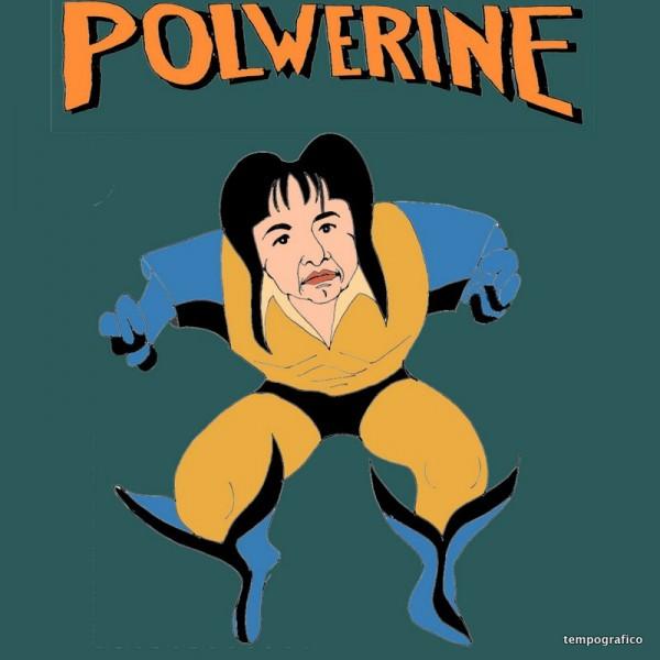 Polwerine - Le Origini